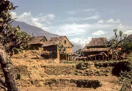 J180 - trek Langtang : Betrawati - Ramche