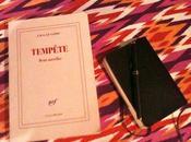 Tempête Deux novellas, Clézio