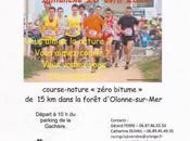 Racing Club Vendée Alfa avril 2014 #vendee