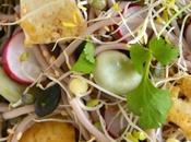 Salade printanière nouilles soba graines germées, fèves tofu sauté {Sans gluten}