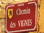 Oenotourisme dans Beaujolais