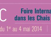 FIAAC Pouilly Fumé 2014 foire pour unir deux arts Peinture Pouilly-sur-Loire