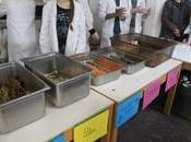 Gaspillage alimentaire lutte lycée Champlain (94)