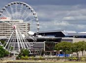 City Guide Brisbane pied
