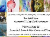 13ème salon d'aquarelle Cucuron (Vaucluse)
