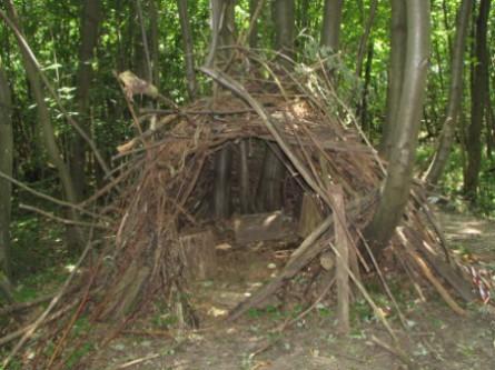 La cabane au fond du bois voir for Cabane au fond du jardin laurent gerra