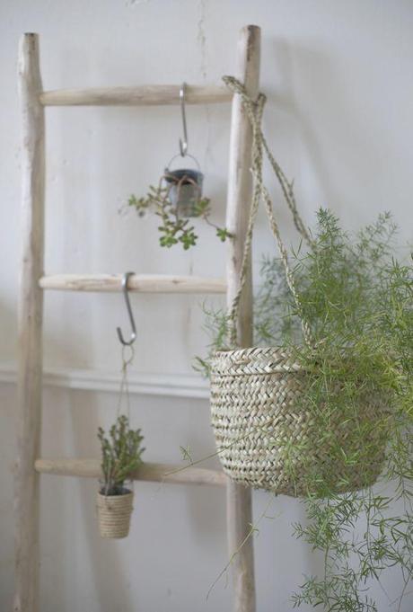 chez moi mon panier d t est devenu un cache pot une tendance d co adopter paperblog. Black Bedroom Furniture Sets. Home Design Ideas
