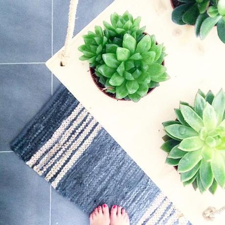 mon petit jardin d int rieur paperblog. Black Bedroom Furniture Sets. Home Design Ideas