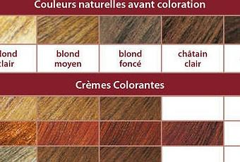 la crme colorante vgtale de logona une coloration trs naturelle paperblog - Coloration Logona