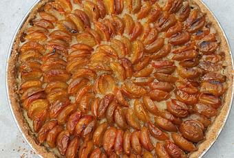 tarte aux mirabelles p 226 te 224 tarte aux noisettes et 224 la farine de ch 226 taigne 192 voir