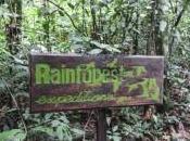 Refugio Amazonas activités dans jungle
