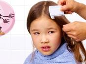 Recette remède naturel anti-poux