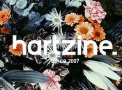 2014 avec Hartzine, tout programme.