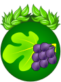 Verrines fromage blanc raisins