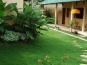 villa Teva Kerobokan installez-vous