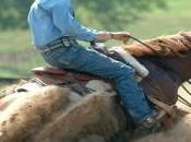 reining, sport équestre haut niveau