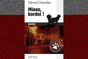 http://media.paperblog.fr/i/733/7330837/miaou-bordel-T-G9kL7I.png