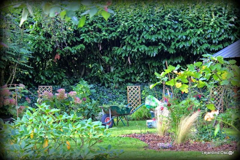 Jardin d 39 octobre paperblog for Jardin octobre