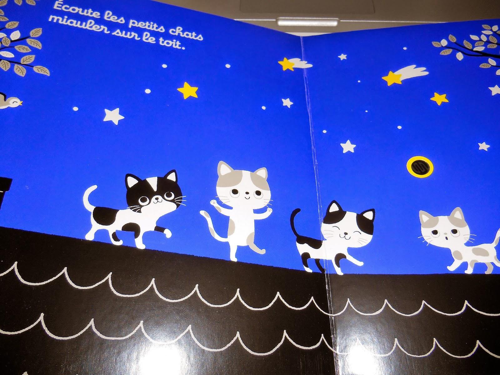 Ecoute dans la nuit paperblog - Bruit qui attire les chats ...