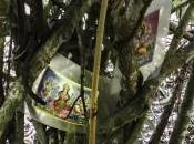 Ecoaldea Kapievi détente dans jungle
