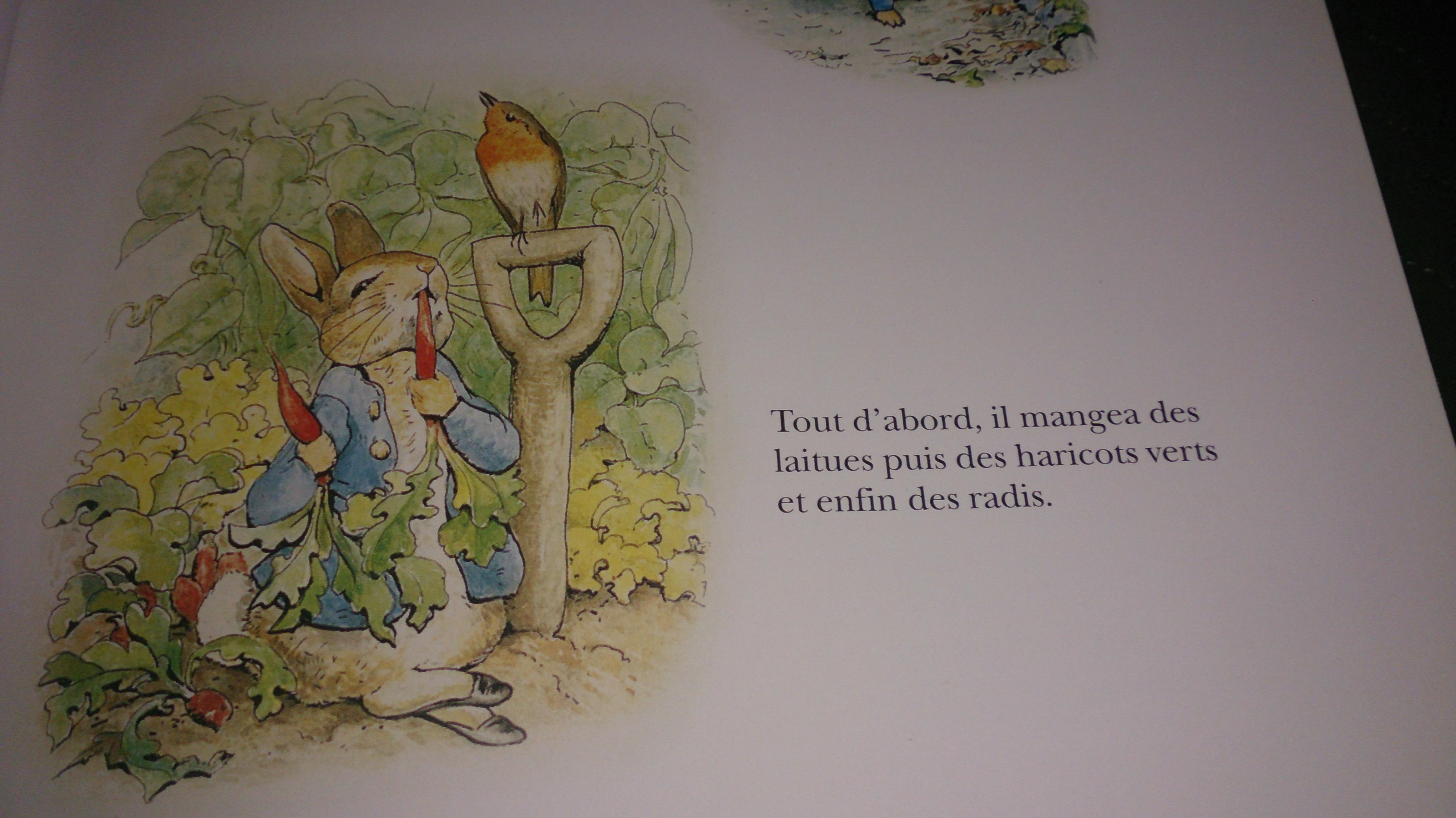 Le grand livre de beatrix potter pierre lapin lire - La chambre des officiers livre ...