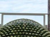 Connaissez-vous Ozukuri magnifiques exemplaires sont exposés jusqu'au novembre Grand Trianon