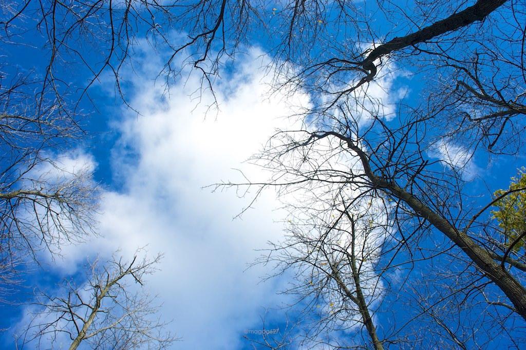 anteketborka.blogspot.com,   ciel_3 4