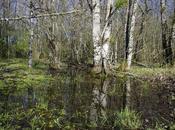 Contestation barrage Sivens combien d'eau consomme l'agriculture française France, l'eau disponible