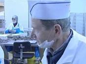 anchois Collioure, longue histoire