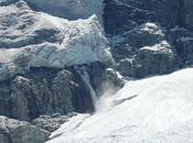 Alpes d'oiseau