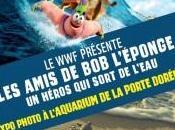 Paris Expo Aquarium Porte Dorée amis l'éponge