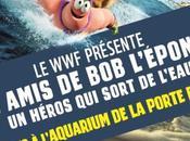 présente l'exposition amis L'éponge héros sort l'eau
