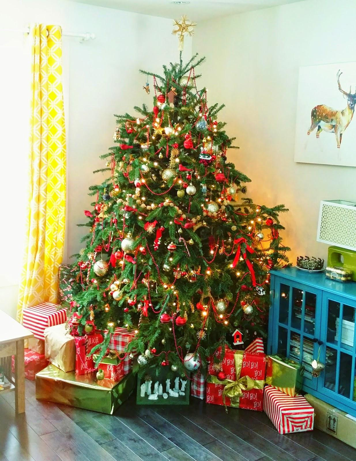 Sapin De Noel Tradition