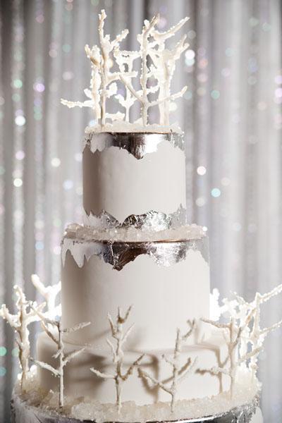 gâteau de mariage pour mariage hiver