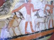 animaux pharaons oryx présence dans l'iconologie l'offrande alimentaire