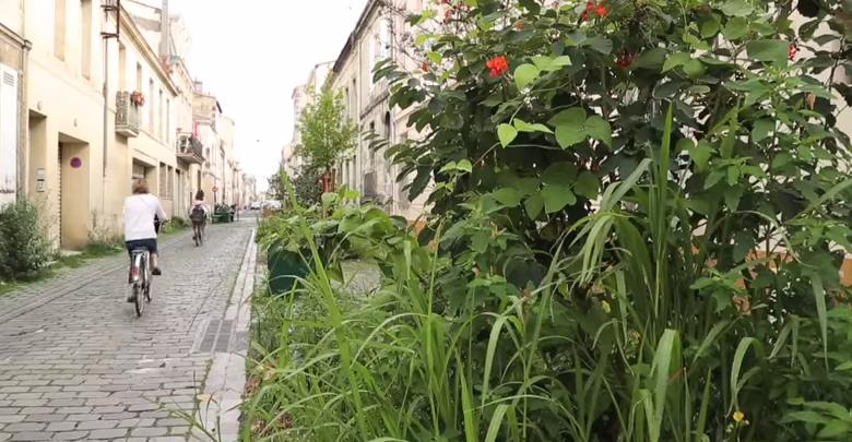 Cr ation d 39 une rue jardin un exemple bordeaux d couvrir - Les jardins de la marjolaine bordeaux ...