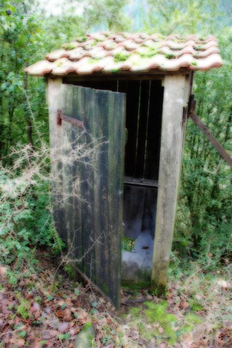 La cabane au fond du jardin d couvrir