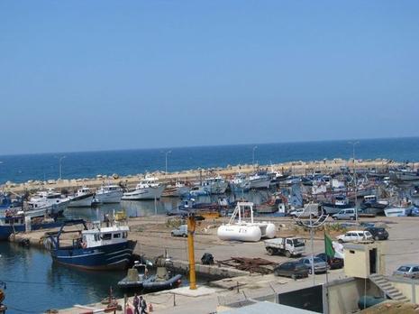 Algérie: les pêcheurs réclament des aides financières Bouharoun-port-peche-L-5