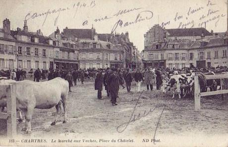 chartres marché vaches