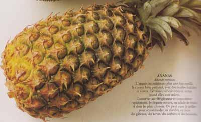Ananas en mille-feuilles, crème de coco