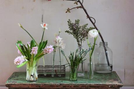 Quelles fleurs choisir pour un bouquet de printemps ?