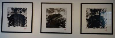 Meei Ann Liu, Recherches photographiques