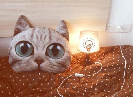 La boutique qui va rendre folles les blogueuses à chat !