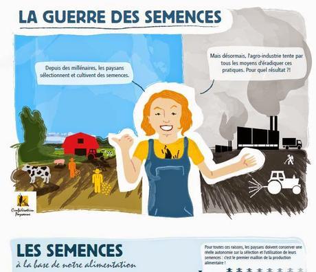 Bataille pour les semences: une infographie pour comprendre