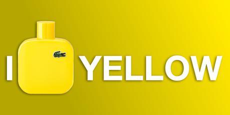 l12 12 yellowb