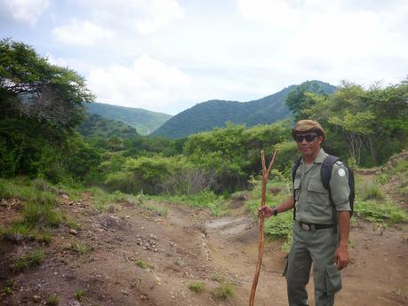 Parc de Komodo Dragon