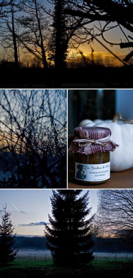 Mélange harmonieux de légumes d'hiver (et un peu de canard)
