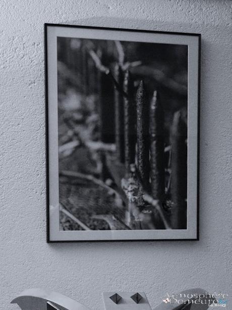 Photographe d'objets et matières à réfléchir