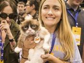 Cette serveuse devenue millionnaire grâce chat!