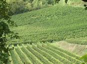 Données météorologiques millésime 2014 Bordeaux